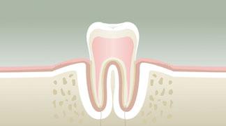 parodontologie1